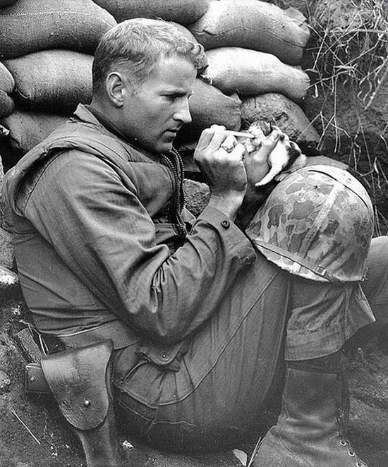 Soldier Feeds Kitten