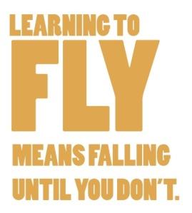 flight...