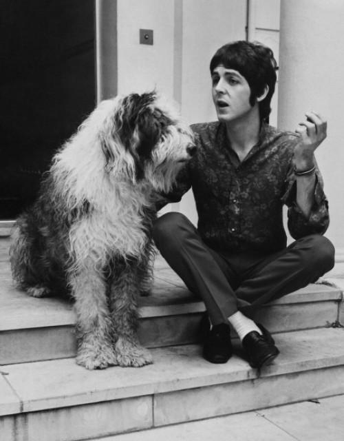 paul_mccartney_dog_martha_1960