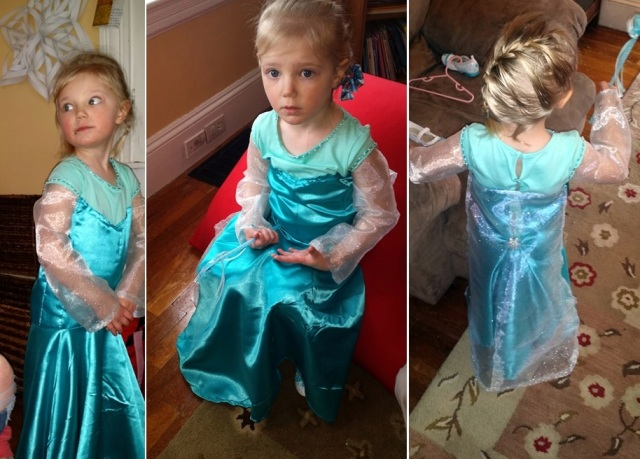 Bizz's Dress - frozen party