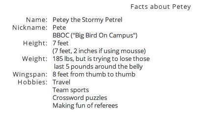 Petey the Petrel's Profile