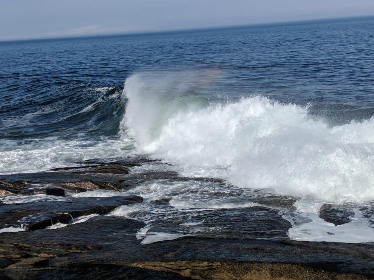 beauty in the waves.jpg